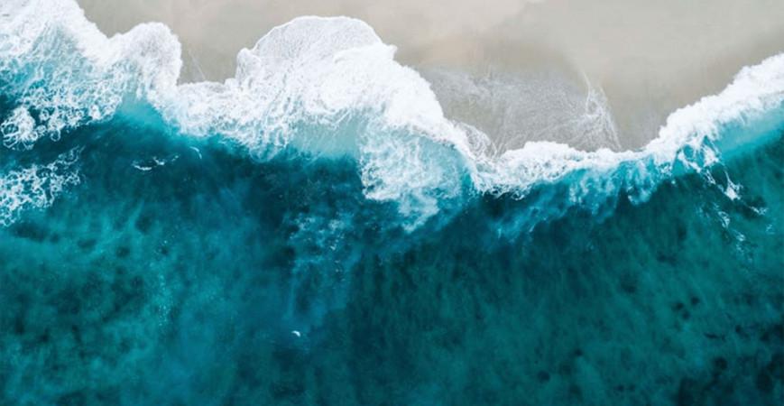 La Pollution Plastique et l'Océan